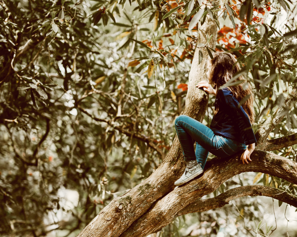 An image of a child climbing a tree