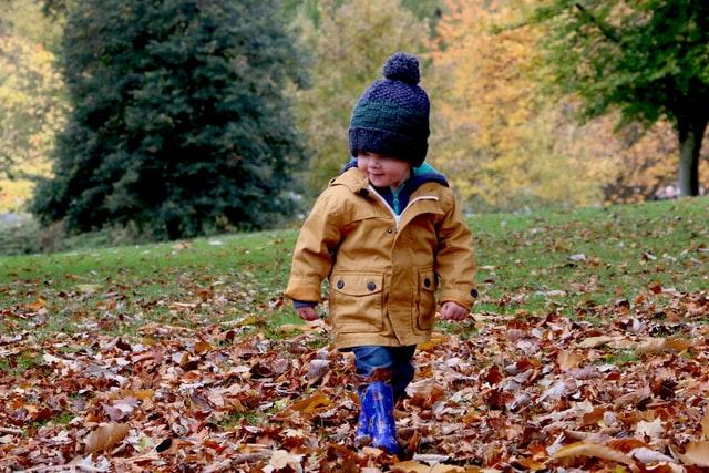 Child in Park in Autumn